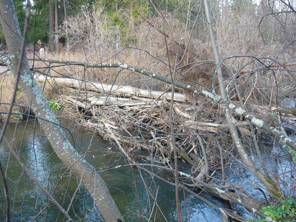 У нас такие запруды делают на речках