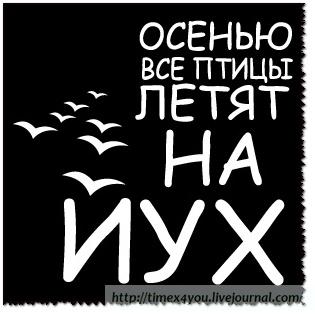 Россия против проведения выборов на оккупированных территориях Донбасса по украинскому законодательству, - Чуркин - Цензор.НЕТ 8813