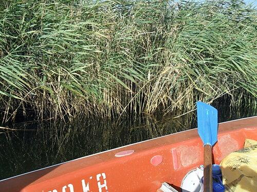 Август 2011, на яхте, Ачуевская коса, Пригибский лиман