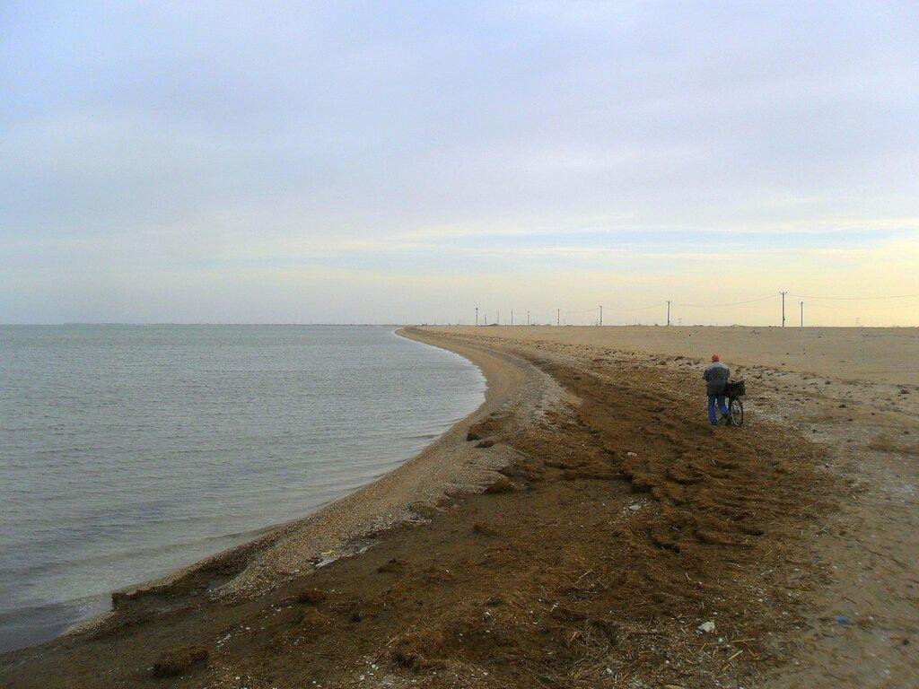 Утром, на берегу залива ... SAM_5554.JPG