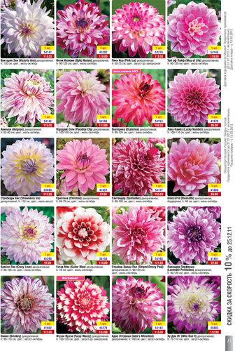 Каталог «Весна 2012!» Открыт приём заказов! www.gardenshop.ru