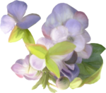 NLD Painted Flower purple (4).png