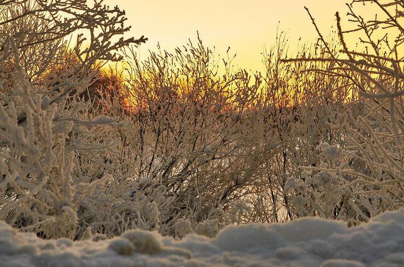 Морозный день. Зимний закат