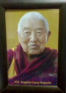 H.E. Yongdzin Lopon Rinpoche