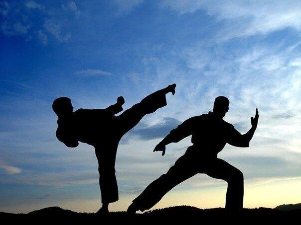Боевые искусства и образ жизни