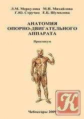 Книга Анатомия опорно-двигательного аппарата