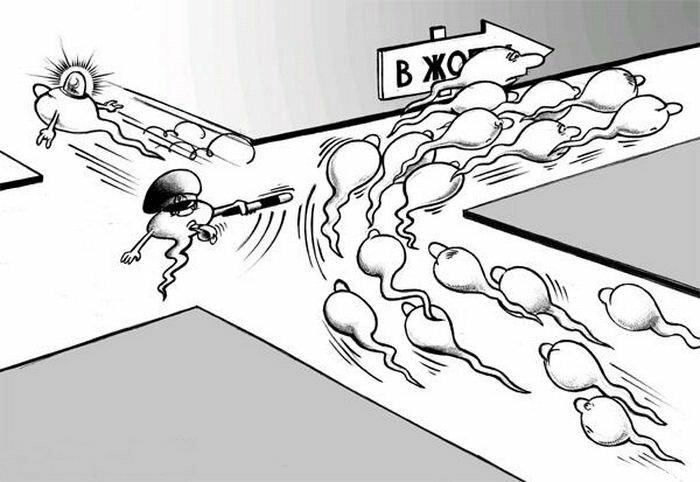 Скорость полета Во время эякуляции сперма человека движется со.