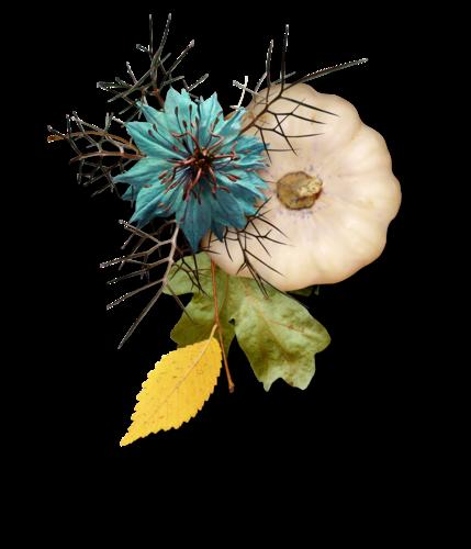 Palvinka_AutumnSplendor_cluster4d.png