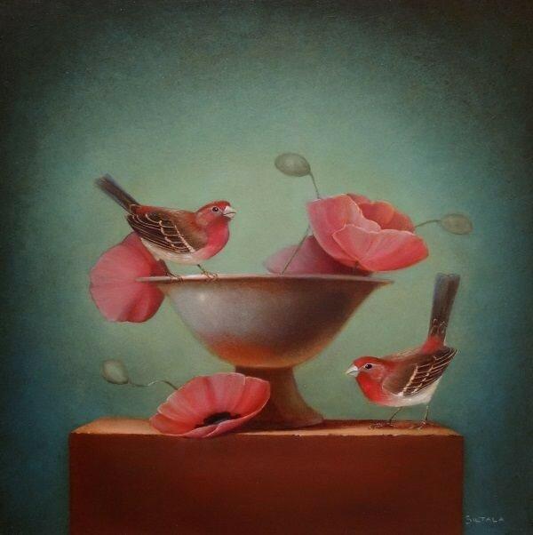 Бабочки и птицы. Американская художница Sarah Siltala
