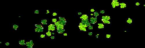 россыпи листьев