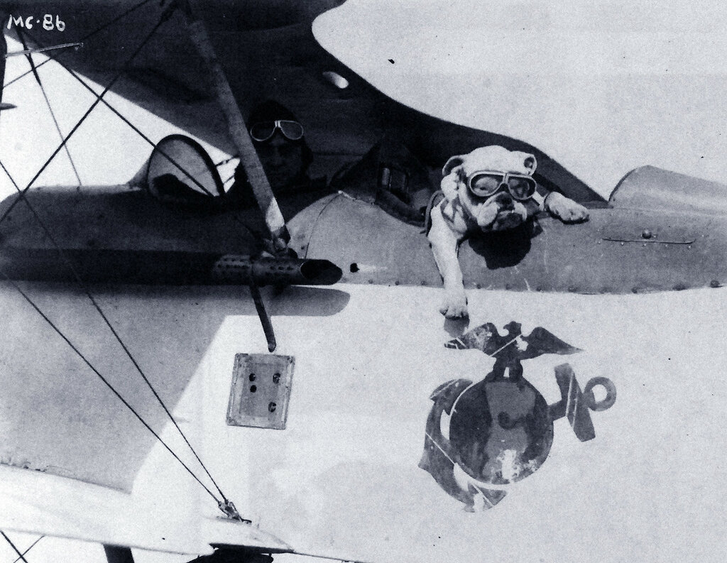 Gunnery Sergeant Benjamin Belcher and Sergeant Jiggs, mascot, in a Vought VE-7 training plane at Brown Field, Quantico, Virginia, 1924