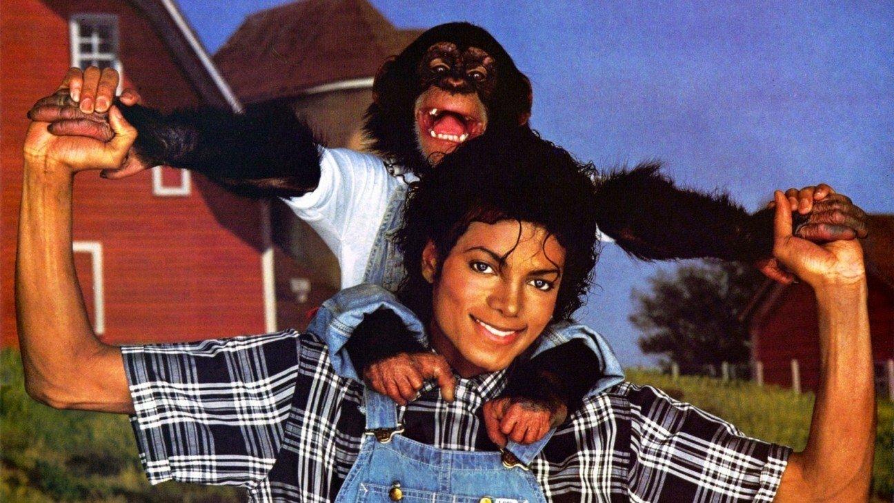 Шимпанзе Майкла Джексона по кличке Бабблз был очень избалованным. Он часто путешествовал с певцом, и
