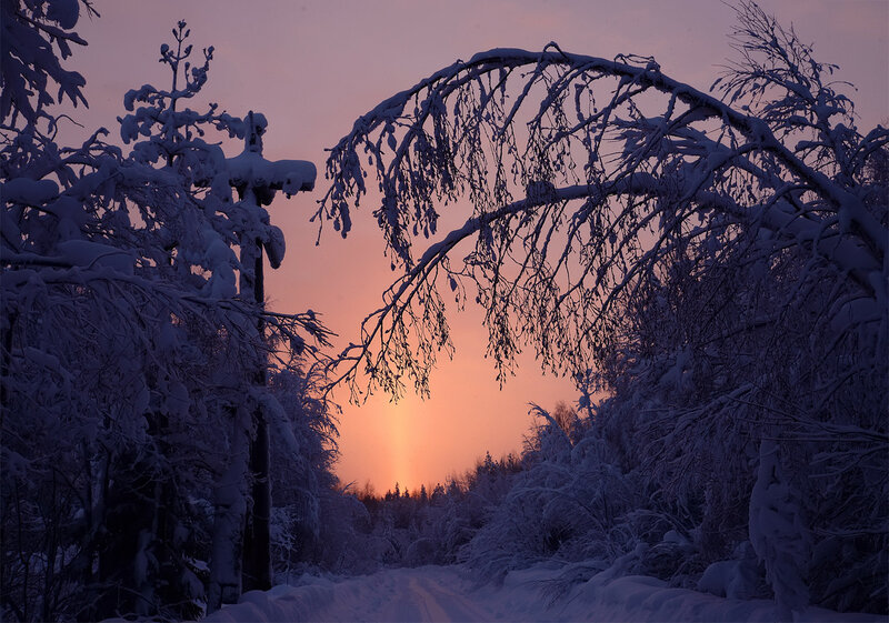 Зимний закат.По дороге домой