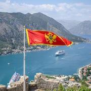 Знамя над заливом