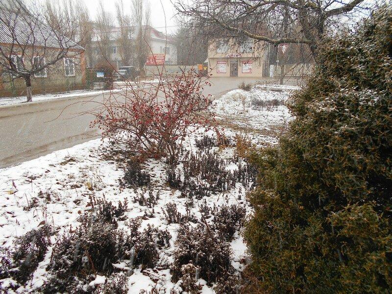 Снег идёт ... DSCN3834.JPG