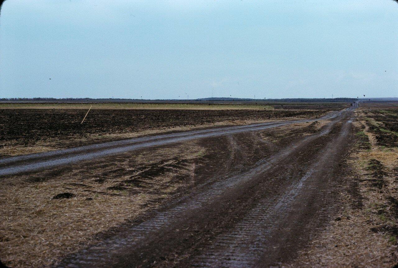 Колхоз  в 50 км к югу от Ростова-на-Дону