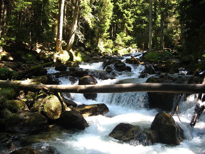 Река Уллу-Муруджу в Теберде - река из сказки - Реки, Лес, Горы - russia, karachay-cherkessia, kavkaz