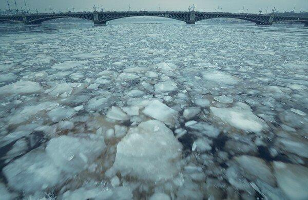 Москва, кинофестиваль, диаспора