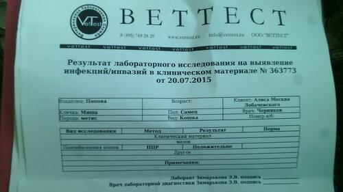 https://img-fotki.yandex.ru/get/4525/50951434.1b/0_132a7b_8b0a26bc_L.jpg