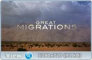 Великие миграции / Great Migrations (2010) BDRip + HDRip