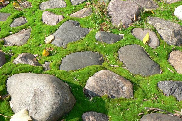 вот по этим камням