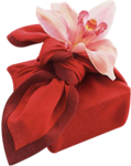 Misssilly-Gift-Feb2008.png