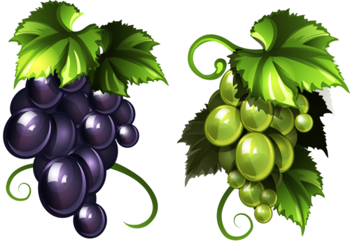 виноград (28).png