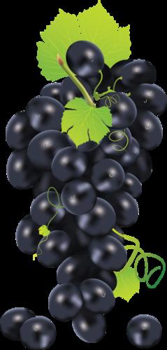 виноград (43).png
