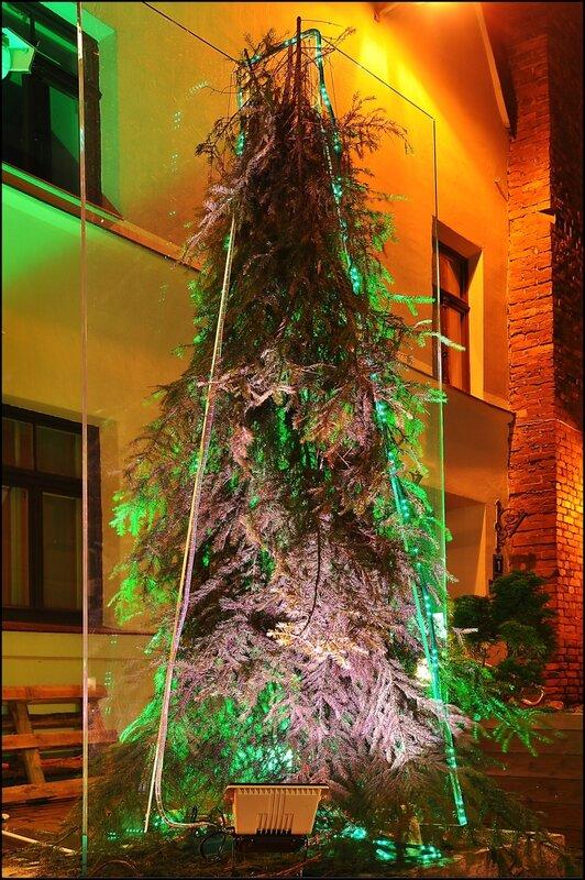 Фестиваль «Путь рождественских елок, 2011» в Риге