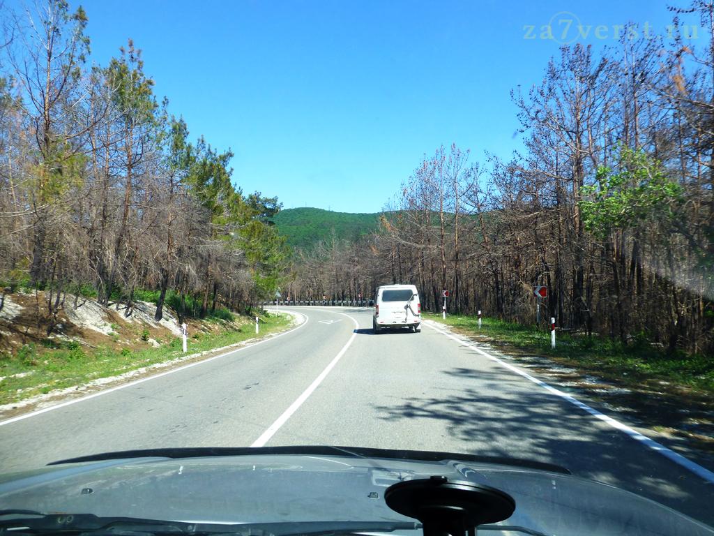 Дорога к Скале-парус (Геленджик)
