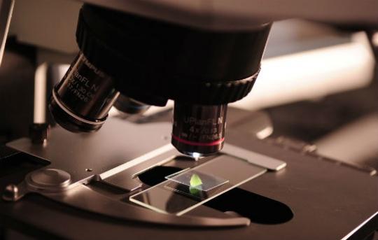 Единственный вмире образец железного водорода потеряли ученые