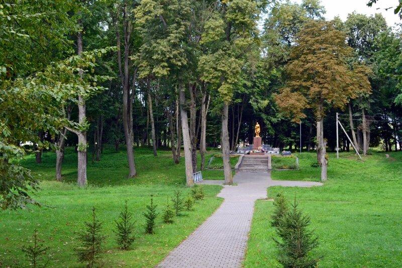 Заросший парк
