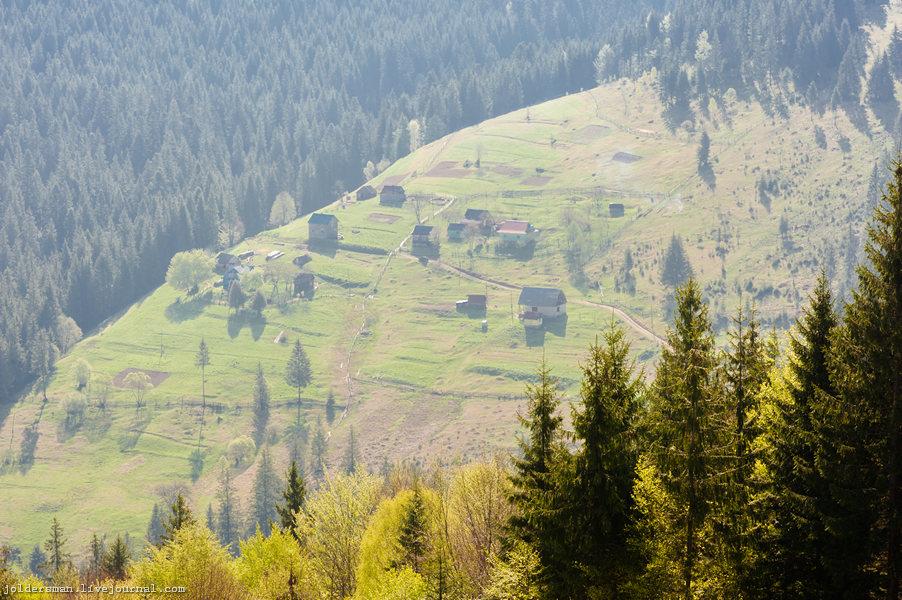 Карпаты Украина вид сверху