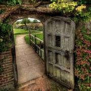 сон ворота