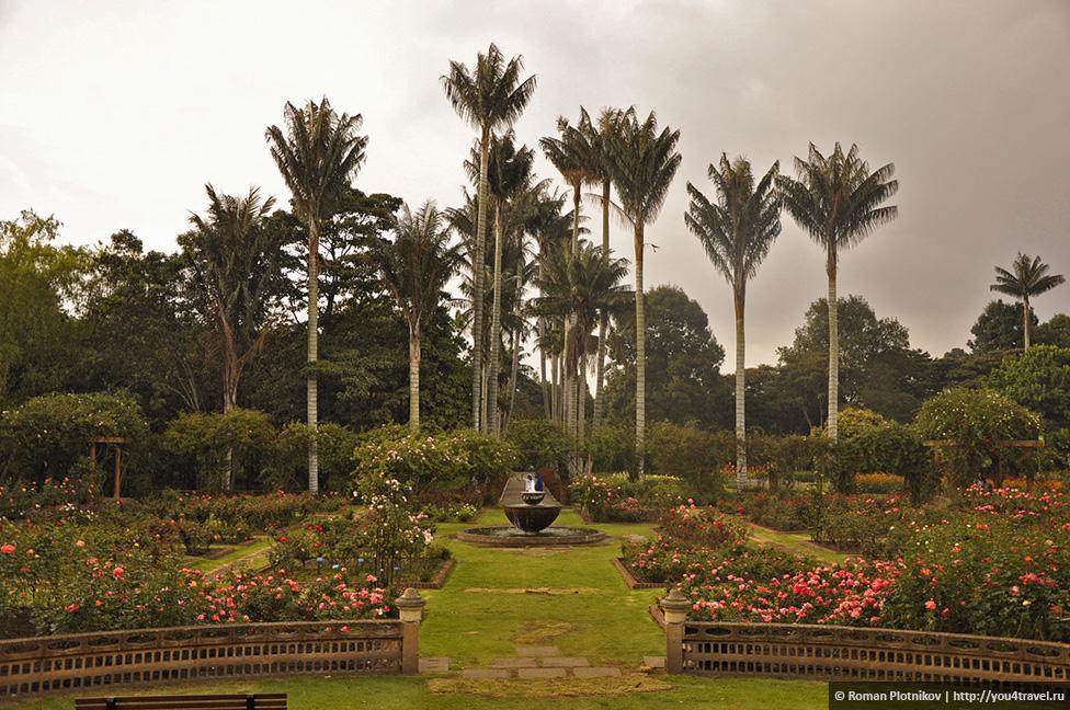 0 1919c5 dbd6cccb orig День 212 213. Прощай, Колумбия! Ботанический сад в Боготе