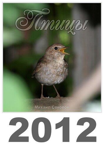 Календарь «Птицы 2012» Обложка - Обыкновенный соловей / Luscinia luscinia