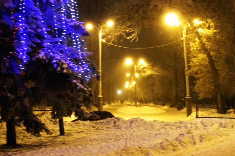 В одном из саратовских парков, 16 декабря 2011 года