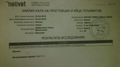 https://img-fotki.yandex.ru/get/4527/50951434.19/0_126b05_d230c0ce_L.jpg