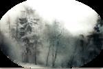1250147602_paysages_nikita.png