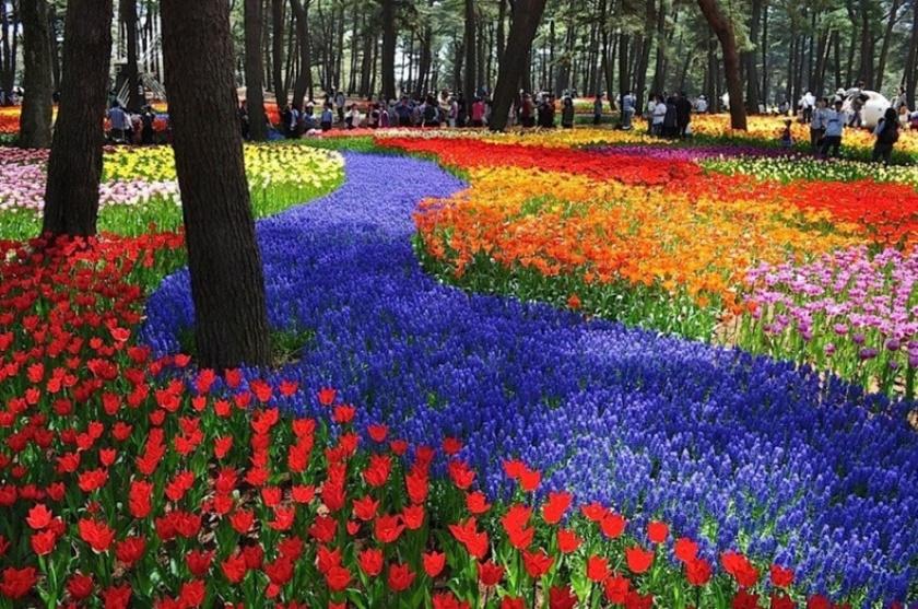 Живописный японский парк Хитати Кайхин 0 1422dc 10cb77e7 orig