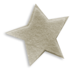 mfisher-star2a-sh.png