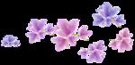 «Magic of Flowers» 0_7c4ac_bc7486c2_S