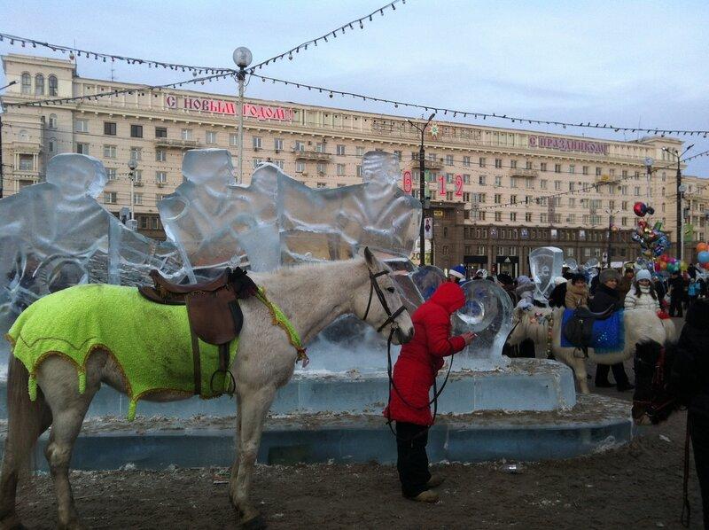 Лошадь и смска