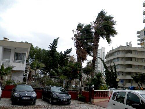 Ветер в Анталии (январь 2012)