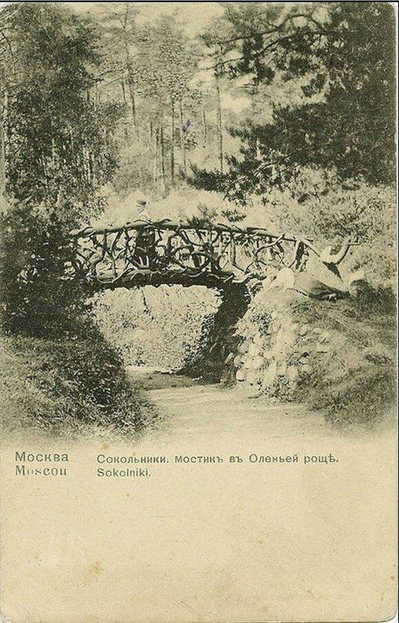 Окрестности Москвы. Сокольники. Олений мостик в Оленьей роще