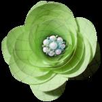 цветы и сладость