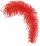 CreatewingsDesigns_Venezia_Feather2.png