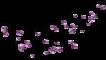 «Magic of Flowers» 0_7c4d9_73f5df68_S