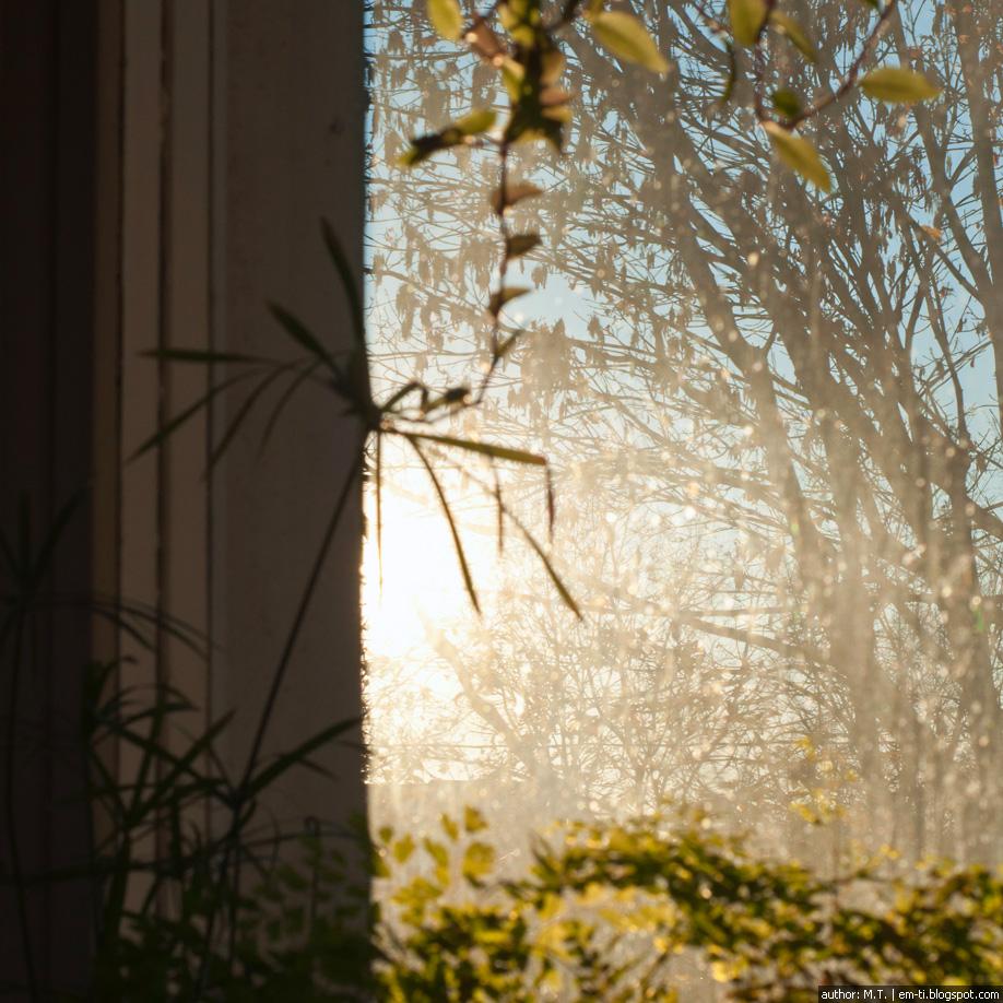 Закат в окне. Фото.