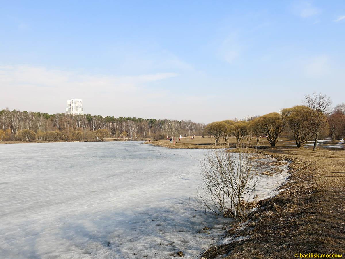 Солнечное затмение. Москва 20 марта 2015.